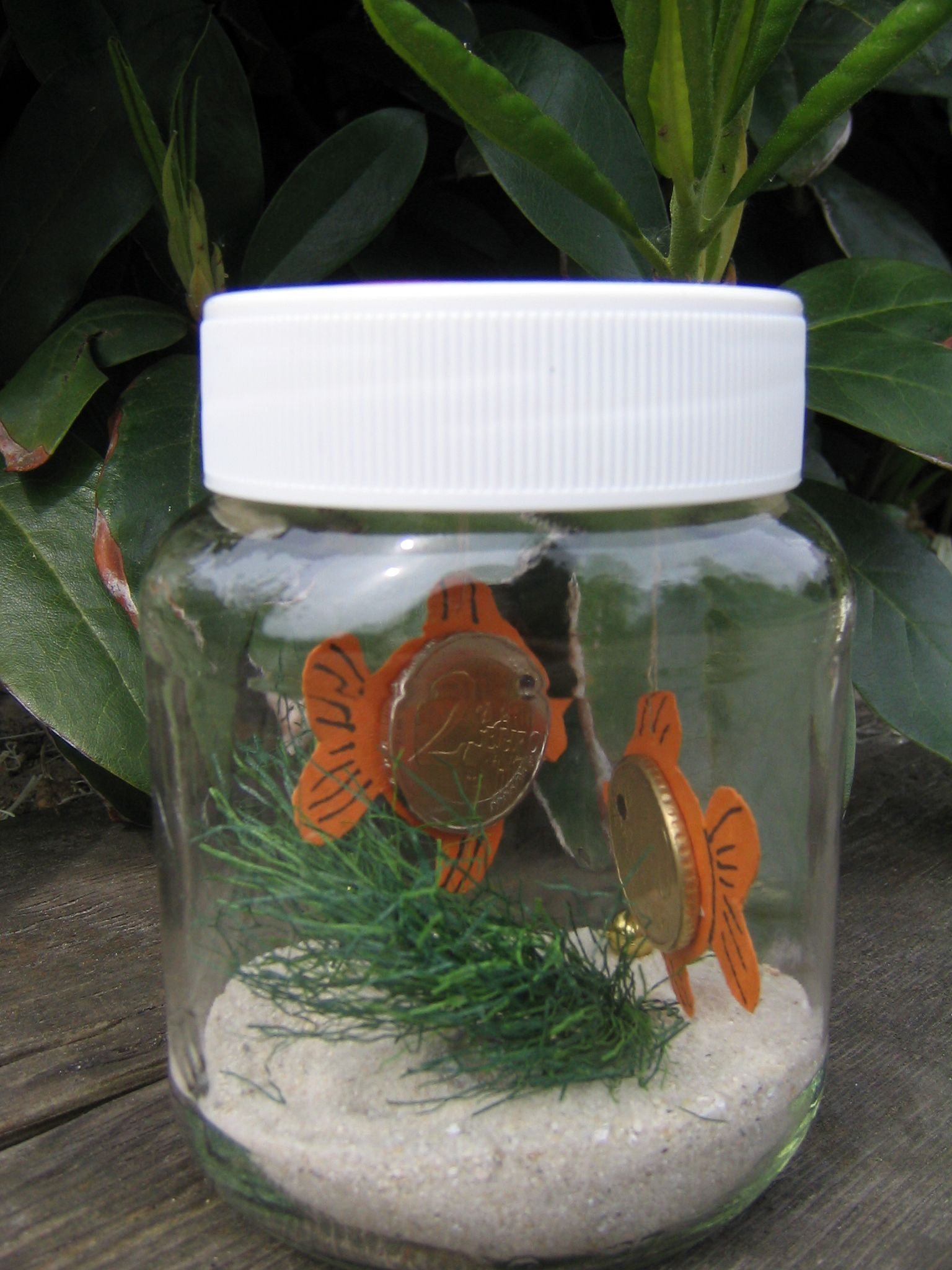 Geldgeschenk-Geldfisch im Glas